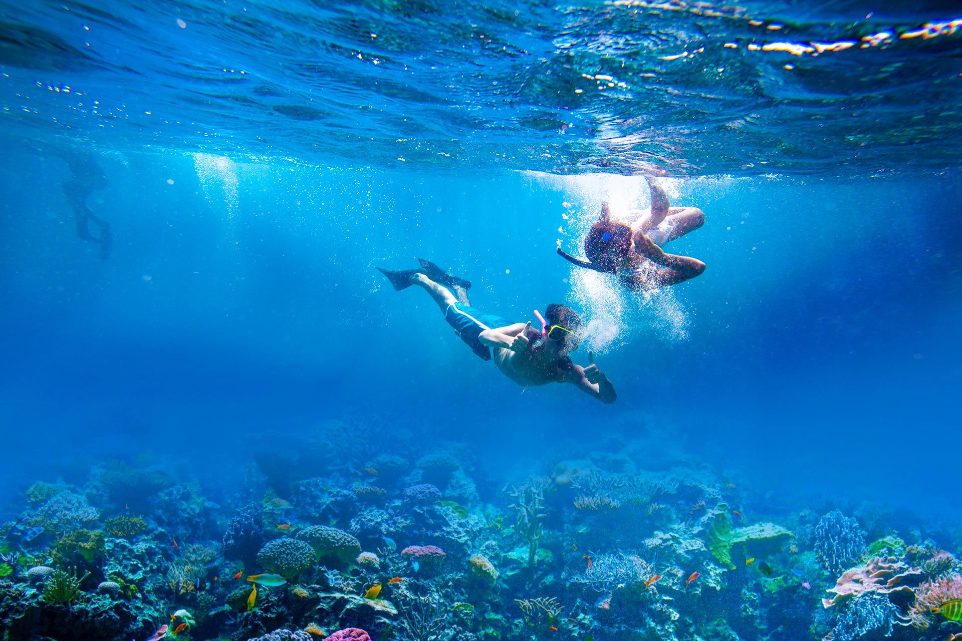 Top 10 Snorkeling Spots in Turks and Caicos