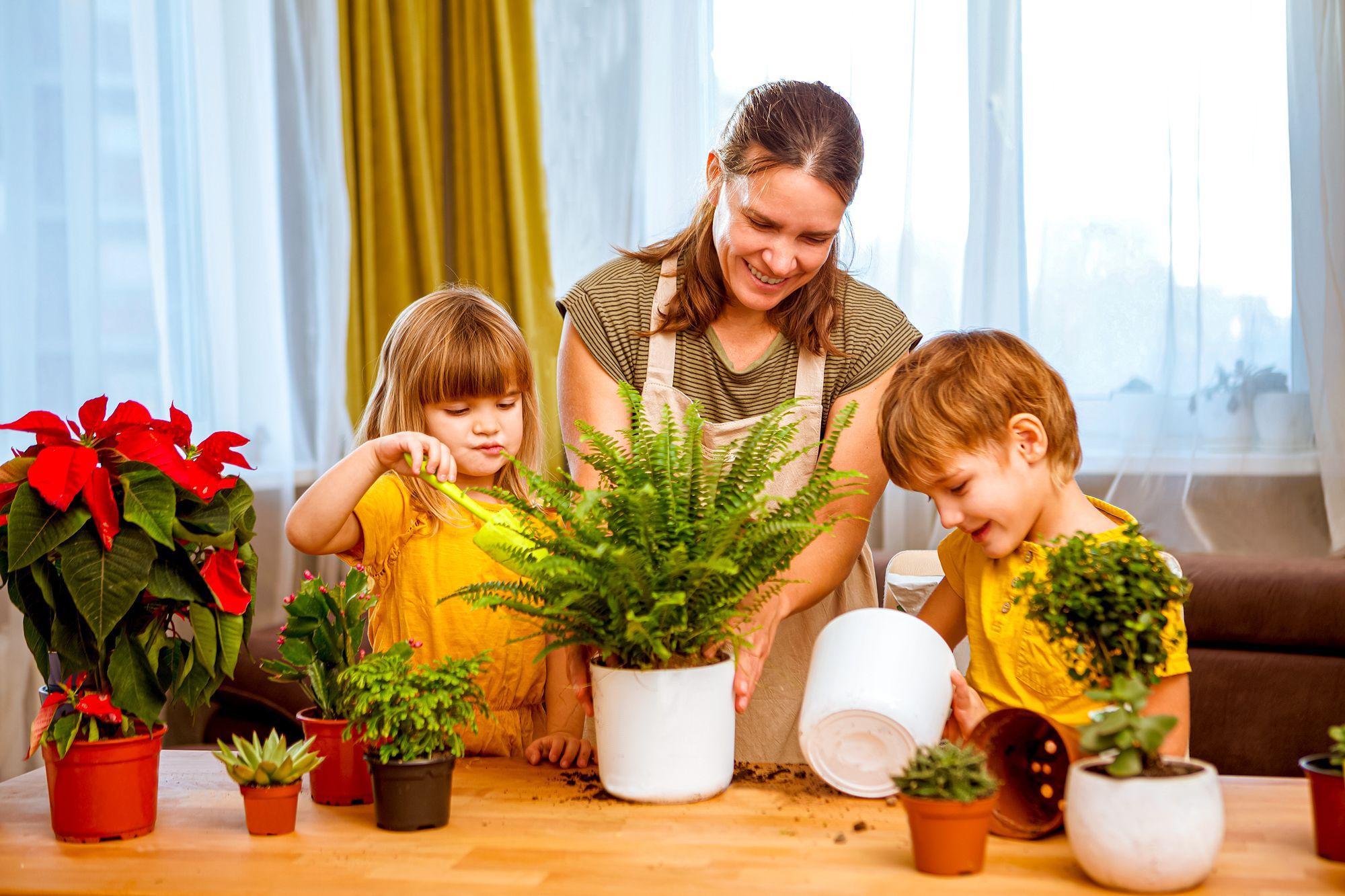Educational Indoor Activities Family Gardening