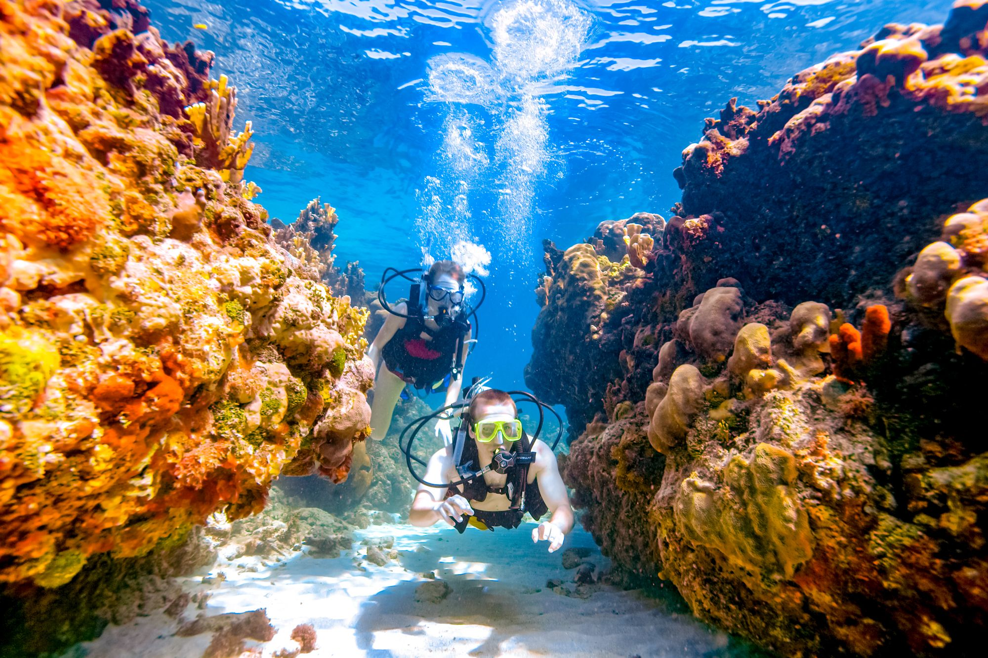 Sandals Montego Bay Scuba Diving Coral Couple