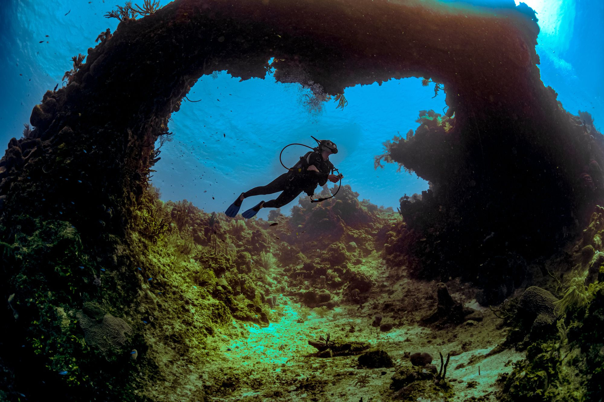 Scuba Diving Jamaica Arches