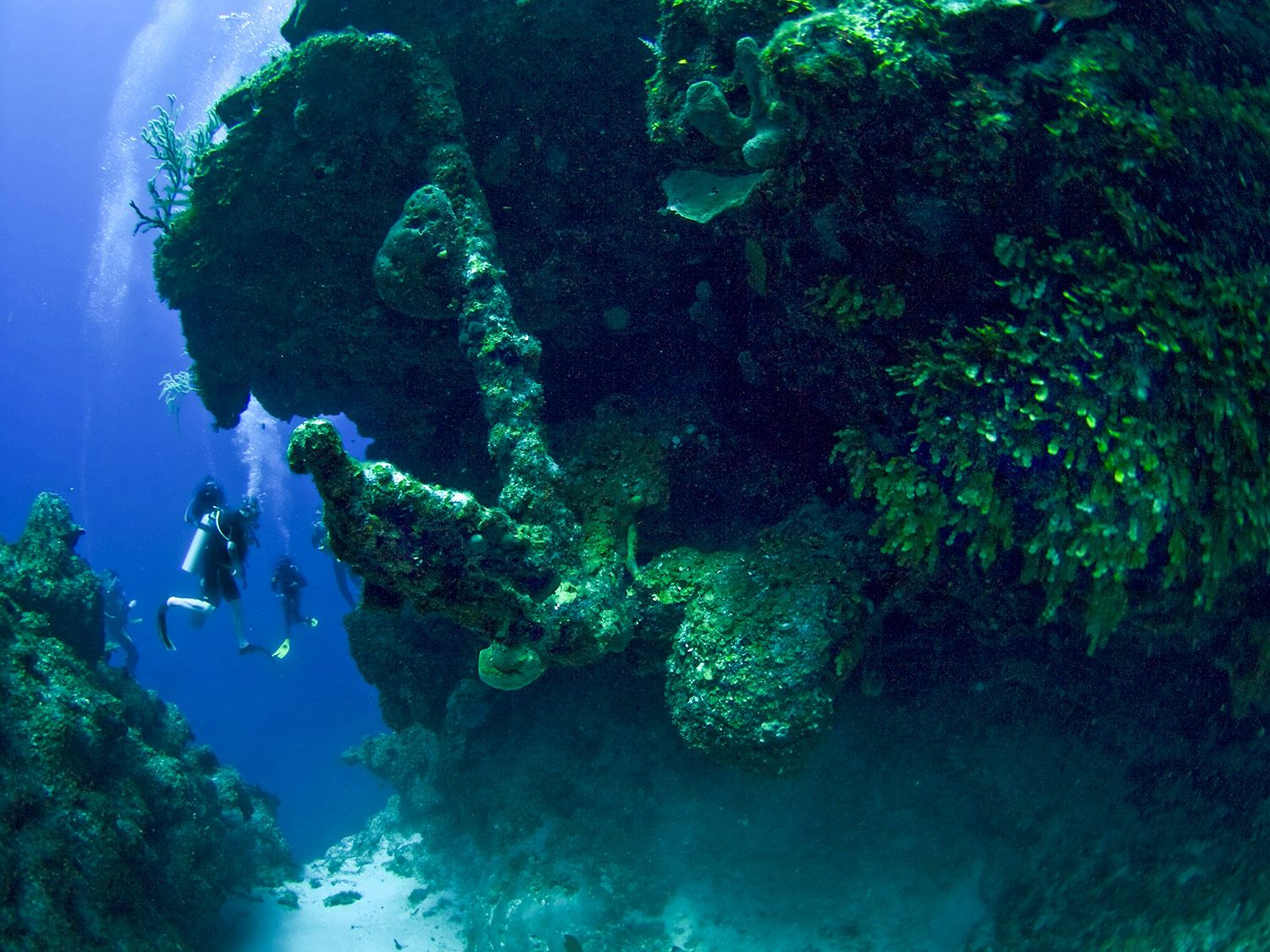 _The-Anchor-Reef-1